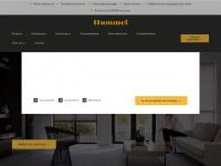 hummel-kozijnen.nl