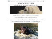 husforeverfriends.nl