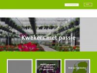 Huyskweker.nl - Huyskweker | specialisten in zomerbloeiers