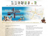 Molenplaza.nl - Molenplaza - Welkom bij Molenplaza