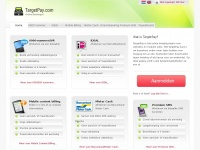 targetpay.com