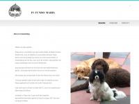 infundomaris.nl