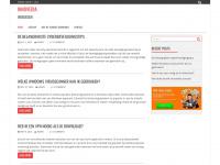 Innovedia   webdesign