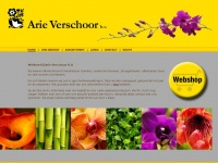 arieverschoor.nl