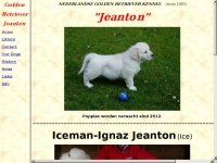 jeanton.nl