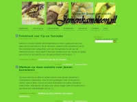 Jemenkameleon.nl