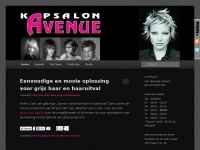 kapsalon-avenue.nl