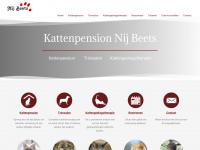 Kattenpension-nijbeets.nl - Startpagina
