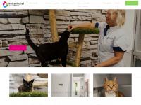 kattenhotelculemborg.nl