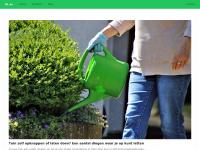 NL.AE Gratis domeinnaam registratie