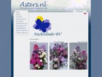 astee.nl