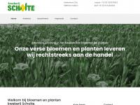 kwekerijscholte.nl