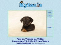 kyloes.nl