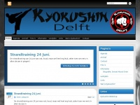 kyokushin-delft.nl
