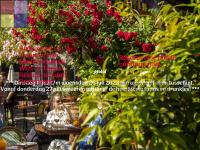 la-cazuela.nl