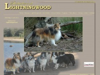 lightningwood.nl