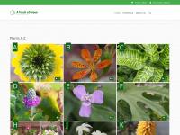 atouchofgreen-gardenwebshop.nl