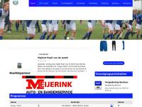 lsv-lonneker.nl