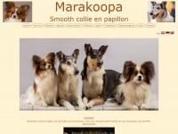 Marakoopa.nl