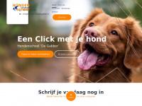 Hondenschool de Gabber   Opvoeding en Training voor honden van elke leeftijd