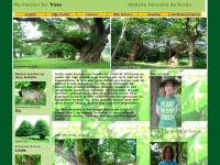 Mypassionfortrees.nl - Home My passion for trees