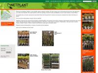 netplant.nl