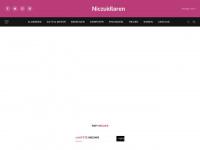 niczuidlaren.nl