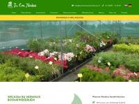 nienhuisboomkwekerijen.nl