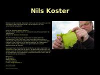 nilskoster.nl