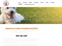 nkc-groningen.nl