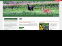 Nojg.nl - Nederlandse Organisatie voor Jacht en Grondbeheer – De organisatie voor Jacht, beheer en schadebestrijding