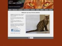 ocicats.nl
