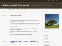 online-marketingbureau.nl