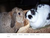 Opvangpruttel.nl - Opvang Pruttel
