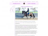 paardrijinstructie.nl