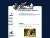 PluimveePlaza.nl - De Online Vogelwinkel