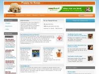 Puppy te Koop - Puppies door top fokkers - Advertenties Puppies door top fokkers – Advertenties - Puppy te Koop