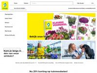ranzijn.nl