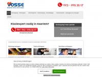 rioleringhaarlem.nl