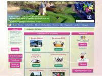 seniorenbeuningen.nl