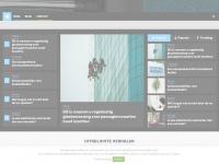 basschoonmaakdiensten.nl