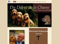 bassetfauvedebretagne.nl