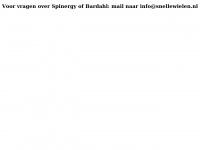 snellewielen.nl