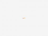 sparkdesign.nl