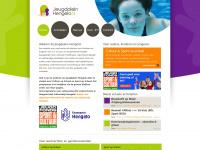 jeugdpleinhengelo.nl
