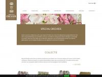 specialorchids.nl
