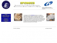Sponges.nl - SPONGES - Sustainable production, Physiology, Oceanography, Natural products, Genetics and Economics of Sponges