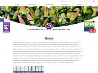 steenvoorden.nl