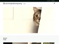 stichtingkattenopvang.nl