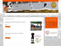 Stormvogels 28 - Nieuws